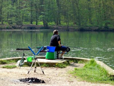 Pêche au coup dans un étang
